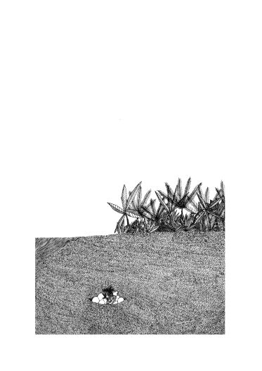 Vinca - 32x24 cm ---- VENDUE : https://www.hatsh.com/oeuvres/79/Vinca_