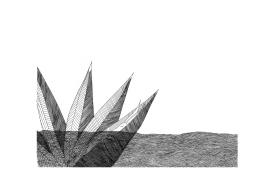 Salomée - 21x29,7 cm ---- ACHAT PEUVRE ORIGINALE - 160 € https://astridjo.com/contact/