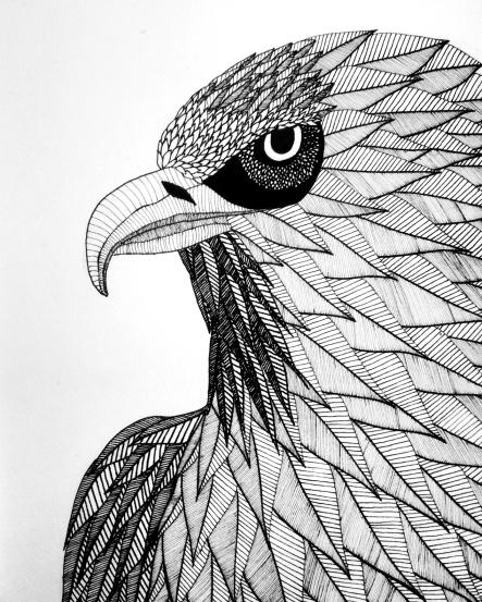 Aigle puertoricain ---- VENDUE https://astridjo.com/contact/